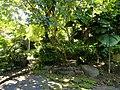 San Juan Botanical Garden - DSC07006.JPG