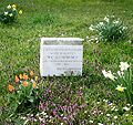 Sankt Marxer Friedhof Blumenbach.jpg