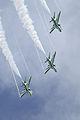 Saudi Hawks 4 (5968618997).jpg