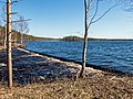 Saunajärvi Niskakoski Kuhmo.jpg