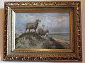 Schafe auf der Düne Weimar.JPG
