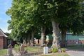 Schleswig-Holstein, Drage, Naturdenkmal NIK 8022.JPG