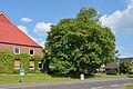 Schleswig-Holstein, Wilster, Naturdenkmal NIK 6517.JPG