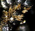Schoonerite-142743.jpg