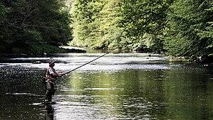 La liste des catégories dans la pêche russe 3