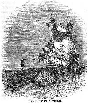 Snake charming - Image: Serpent Charmers (p.161, November 1865, XXII)