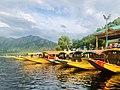 Shikara Dal Lake.jpg