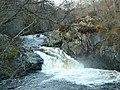 Shin Falls - geograph.org.uk - 1280.jpg