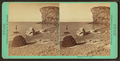 Shores of Salt Lake, by Savage, C. R. (Charles Roscoe), 1832-1909.png