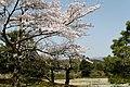 Shugakuin villa (5834474899).jpg