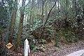 Sign of the forest intended for landslide prevention in Kuboizumi, Saga.jpg