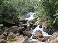 Sinharaja Forest waterfall2.JPG