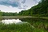 Skunk Lake.jpg