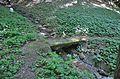 Small bridge II HQL, Kasten bei Böheimkirchen.jpg