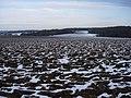 Snowy farmland - geograph.org.uk - 1158437.jpg