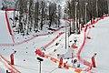 Sochi2014 - panoramio (145).jpg