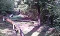 Sommerrodelbahn in Gackenbach im Wald - und Freizeitpark Westerwald - 3.jpeg