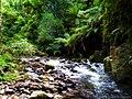 South Brazil (15657086144).jpg