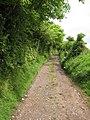 South West Coast Path - geograph.org.uk - 1402286.jpg