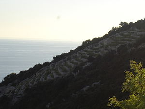 Korčula - South coast of Korčula