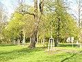 Stahnsdorf - Dorfanger (Village Green) - geo.hlipp.de - 35356.jpg