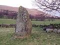 Standing stone at Castleton - geograph.org.uk - 352906.jpg
