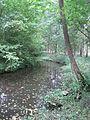 Steinau westlich Steensburg 010.JPG
