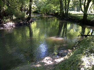 Stevens Creek (Illinois) river in United States of America