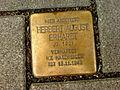 Stolperstein Hannover Linden Deisterstraße 16 Hier arbeitete Herbert August Erhardt Jahrgang 1901 verhaftet KZ Natzweiler Tot 15. November 1942.jpg