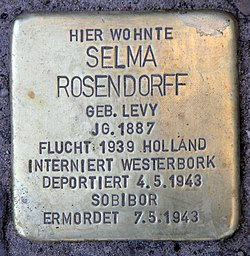 Stolperstein roscherstr 5 (charl) selma rosendorff