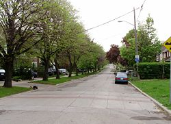 Strathearn Road in Cedarvale