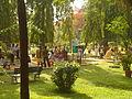 Subhash Bose Park Ernakulam Garden2.JPG