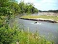Suceava River.jpg