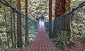 Suspension bridge on Juan de Fuca Trail, Vancouver Island, Canada 02.jpg