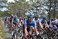 TDF2012 13e étape peloton 15.JPG
