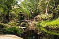 Tajor waterfall - Natural pool - Bako National Park - Sarawak - Borneo - Malaysia - panoramio.jpg