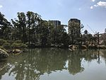 Takueichi Pond in Shukkei Garden 13.jpg