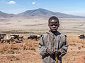 Tanzania - Boy herding cattle (14518916573).jpg