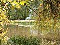 Teich an der Teufelsbrücke im Naturpark Schönbuch - panoramio.jpg