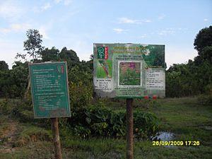 Teknaf Wildlife Sanctuary - Image: Teknaf game reserve