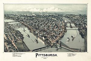History of Pittsburgh - Pittsburgh in 1902. Lithograph by Thaddeus Mortimer Fowler.