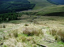 The Beacons Way at Craig y Fan Ddu - geograph.org.uk - 476809.jpg