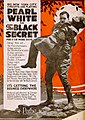The Black Secret (1919) - 5.jpg