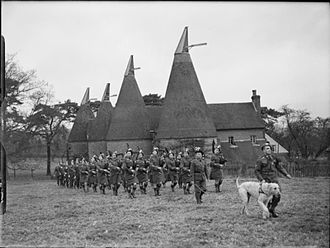 London Irish Rifles - The Pipe Band of the London Irish Rifles on parade with their Irish Wolfhound mascot, near Tunbridge Wells, Kent, 31 December 1940.
