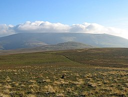 The Cheviot - geograph.org.uk - 246415.jpg