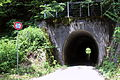 The Five hundred mountain pass tunnel.jpg