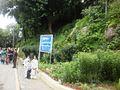 The Mall Road Murree - panoramio.jpg