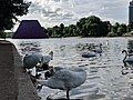 The Mastaba (Project for London, Hyde Park, Serpentine Lake), with swans.jpg