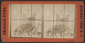 The Menagerie, from Robert N. Dennis collection of stereoscopic views.png