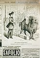 The bloomer and the buffalo. A prospective result of the completion of the U.P.R.R. LCCN2002720306.jpg